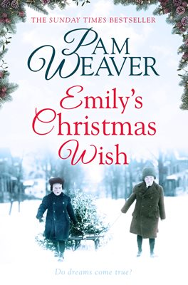 Book cover for Emily's Christmas Wish