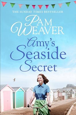 Book cover for Amy's Seaside Secret