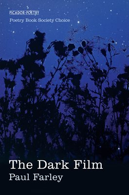 Book cover for The Dark Film
