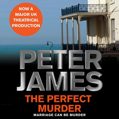 Book cover for The Perfect Murder