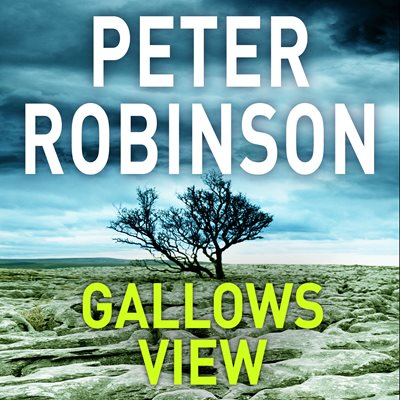 Book cover for Gallows View