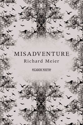 Book cover for Misadventure
