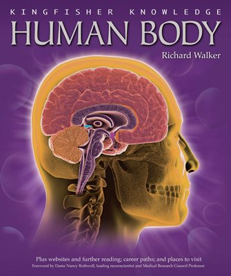 Book cover for Kingfisher Knowledge: Human Body