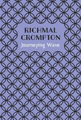Book cover for Journeying Wave