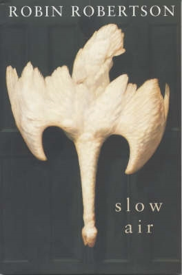 Book cover for Slow Air