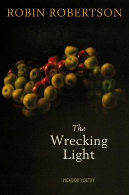 Book cover for The Wrecking Light