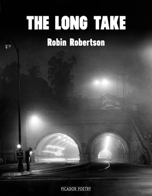 Book cover for The Long Take