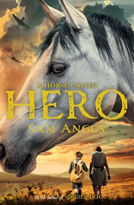 Book cover for A Horse Called Hero