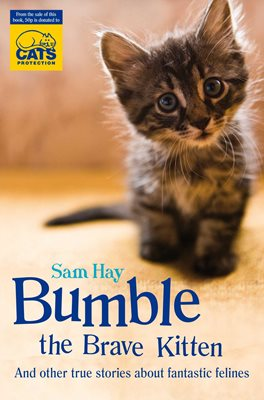 Book cover for Bumble the Brave Kitten