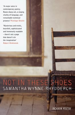 Book cover for Not In These Shoes