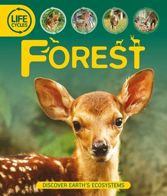 Book cover for Life Cycles: Forest
