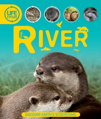 Book cover for Life Cycles: River