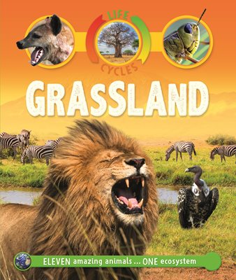 Book cover for Life Cycles: Grassland