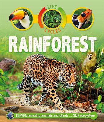 Book cover for Life Cycles: Rainforest
