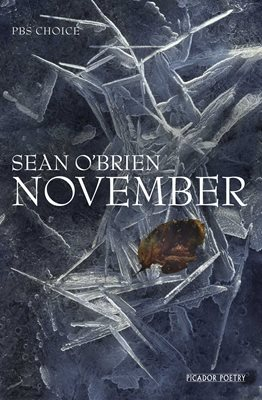 Book cover for November