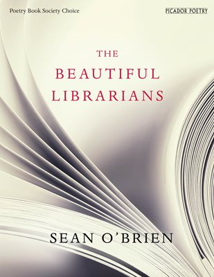 Book cover for The Beautiful Librarians