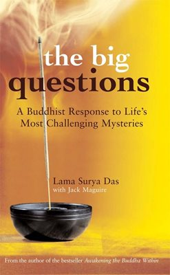 Book cover for The Big Questions