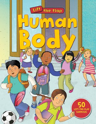 Book cover for Human Body (Lift-the-Flap)