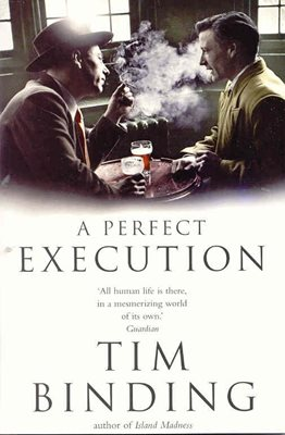 Book cover for A Perfect Execution