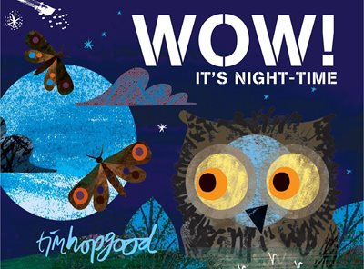 Book cover for WOW! It's Night-time