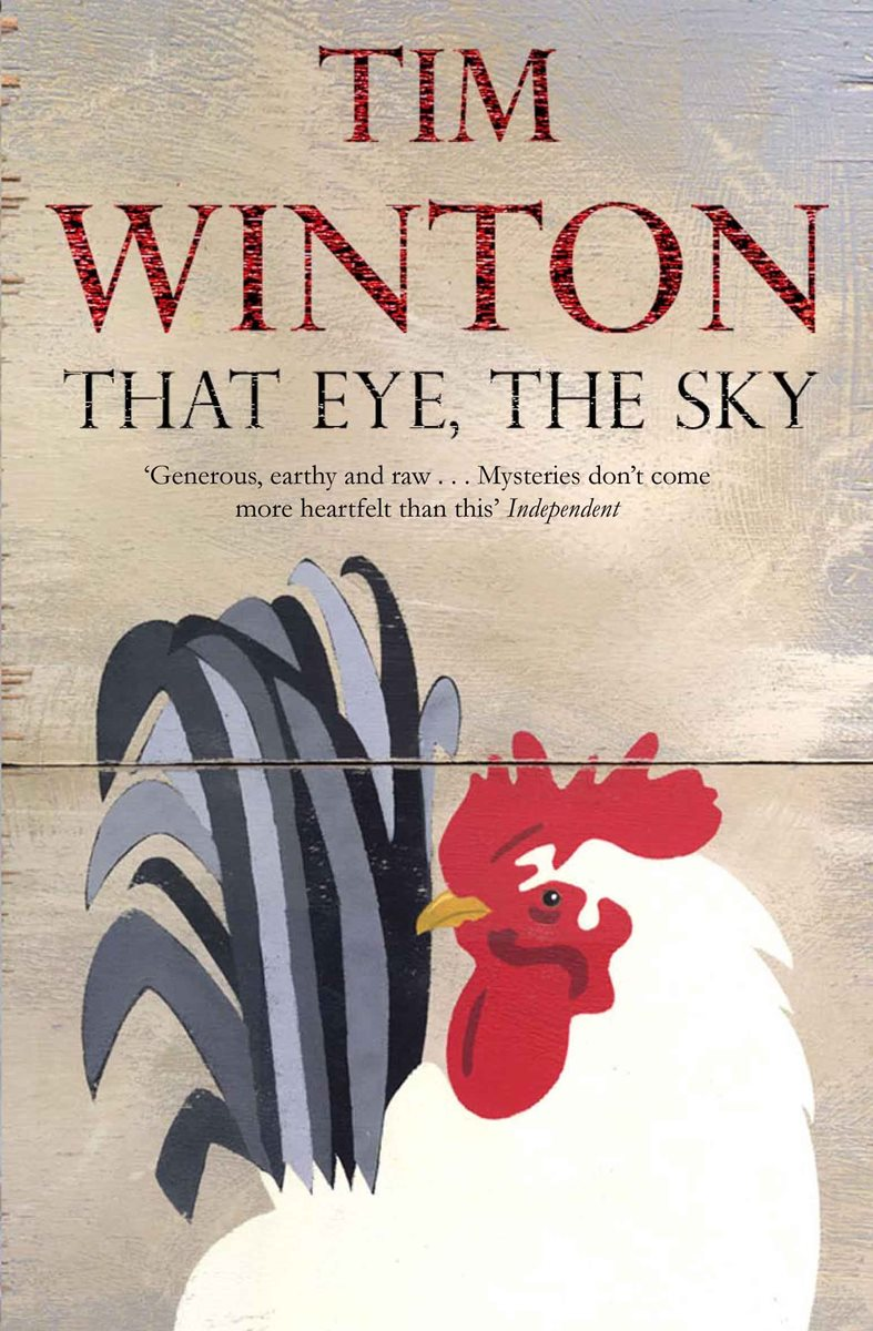 "an analysis of the key themes and ideas in eye the sky by tim winton Tim winton's ""distant lands"" is a short story that uses imaginative journey that allows the readers to internally examine themselves throughout this."