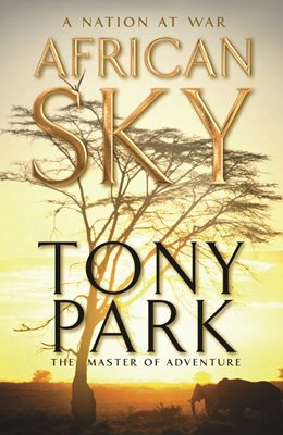Book cover for African Sky