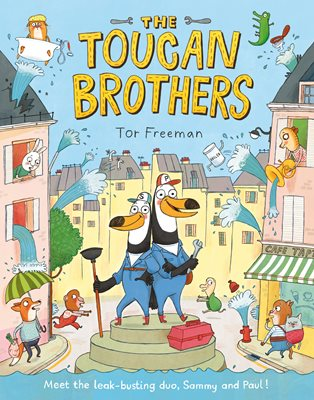Book cover for The Toucan Brothers
