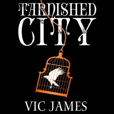 Book cover for Tarnished City